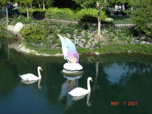 Swans in the Moat 2007